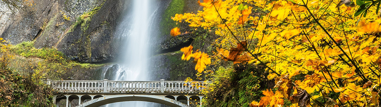 Columbia Gorge Waterfalls & Wine Tasting Tour Combo