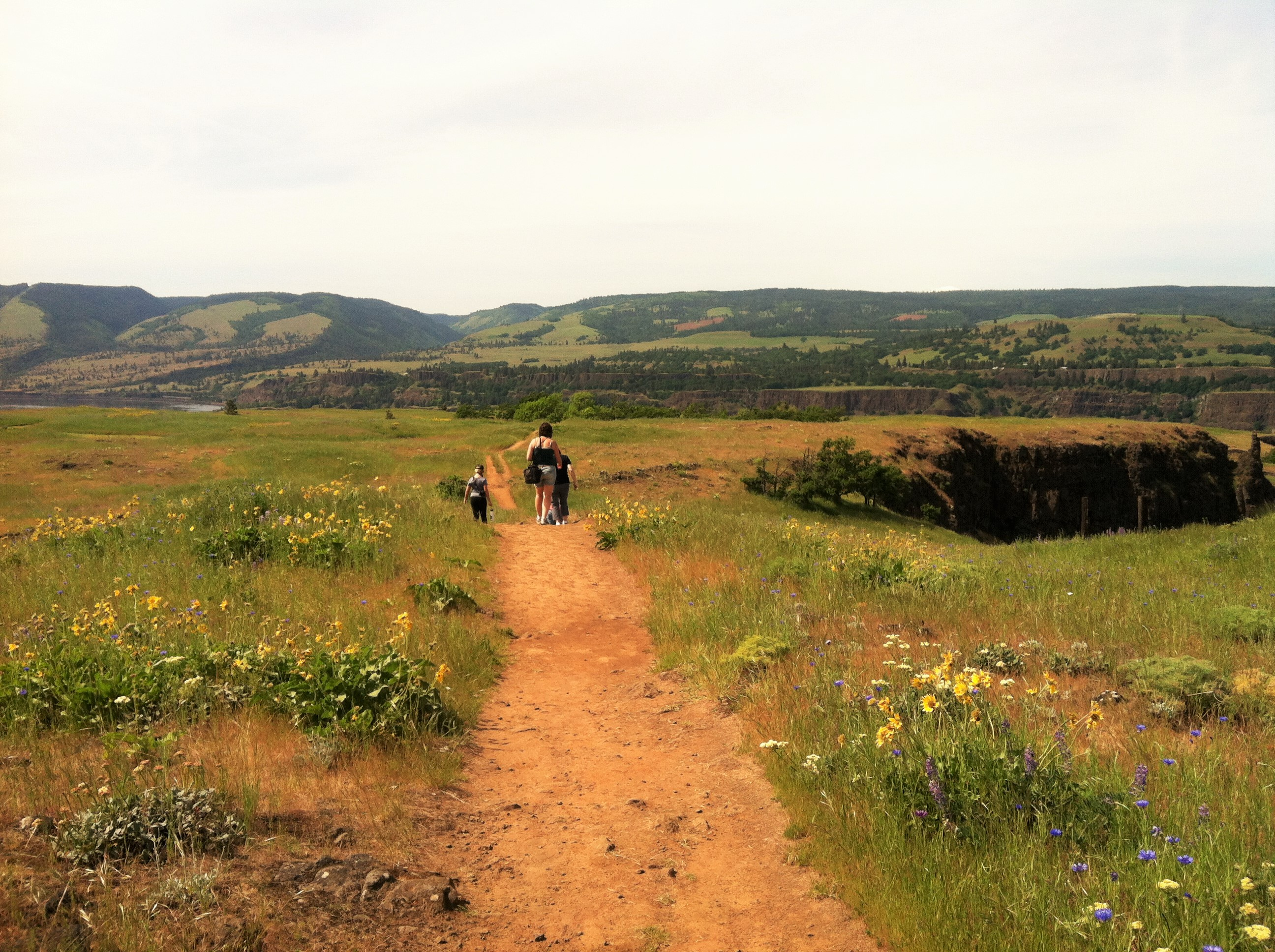 Hiking in the Tom McCall Preserve at Rowena, photo by Carrie Uffindell