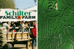 Best of Northwest Corn Mazes & Pumpkin Patches
