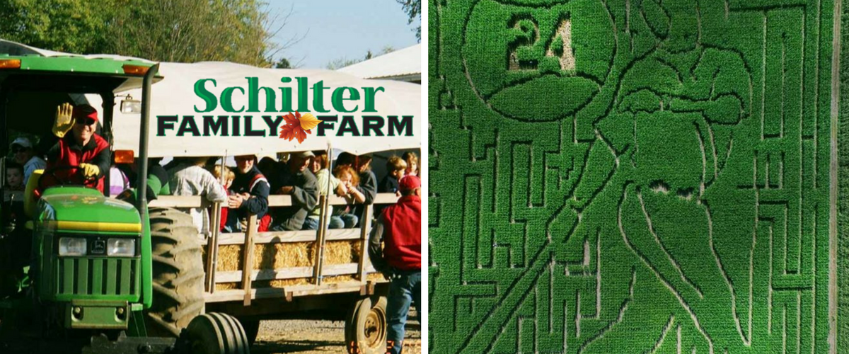 Schilter Family Farm