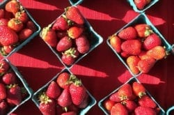 Strawberries from Vancouver Farmer's Market