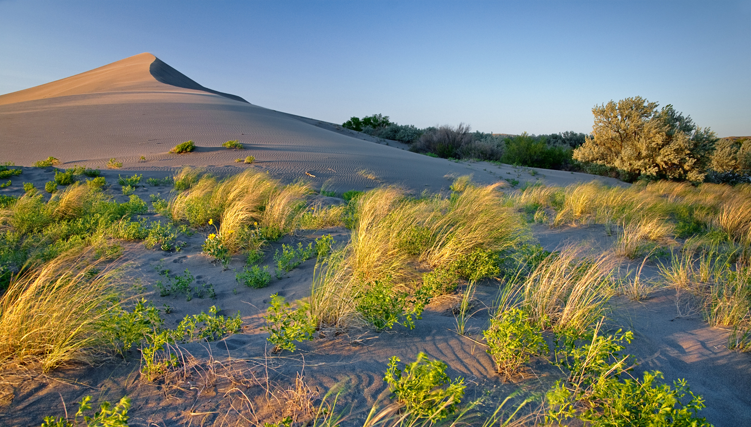 Bruneau Sand Dunes photo by Charles Knowles via Flickr Creative Commons