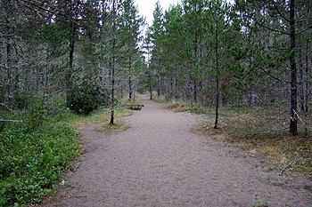 Leadbetter Point State Park