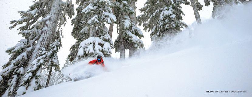 Mt. Baker Ski Area