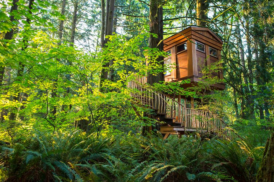 treehouse point - best places to get married in the northwest t