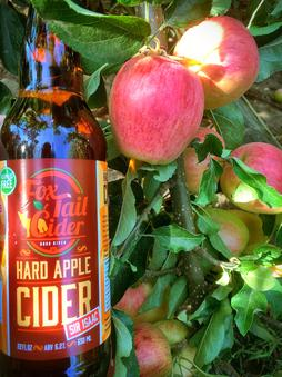 Fox-Tail Cider, Hood River, OR