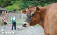 Mary Olson Farm - Kent, WA