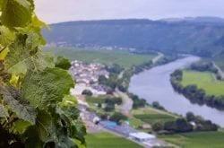 Sample Some of the Best of the Northwest's Wineries