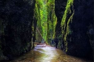 Before the Fire: Oregon's Spectacular Oneonta Gorge, Our Photo of the Week