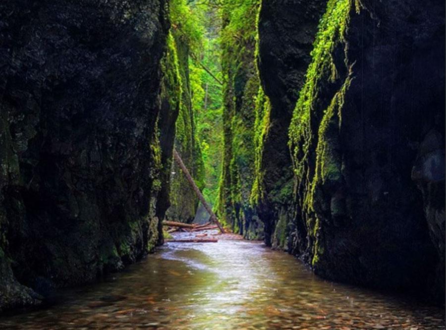 Oneonta, Gorge, Oregon photo credit: @nextlocationtbd