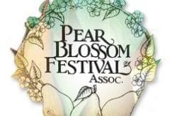 pear blossom festival logo