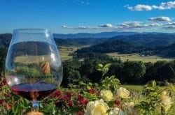 youngberg hill winery
