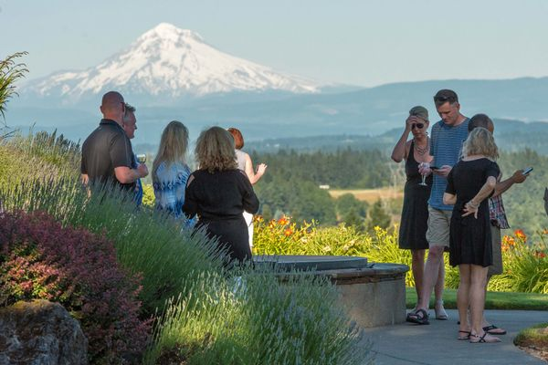 petes mountain vineyard wine tasting in oregon mt hood view