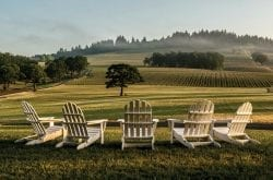 13 Oregon Wineries Easy to Visit with Limited Mobility