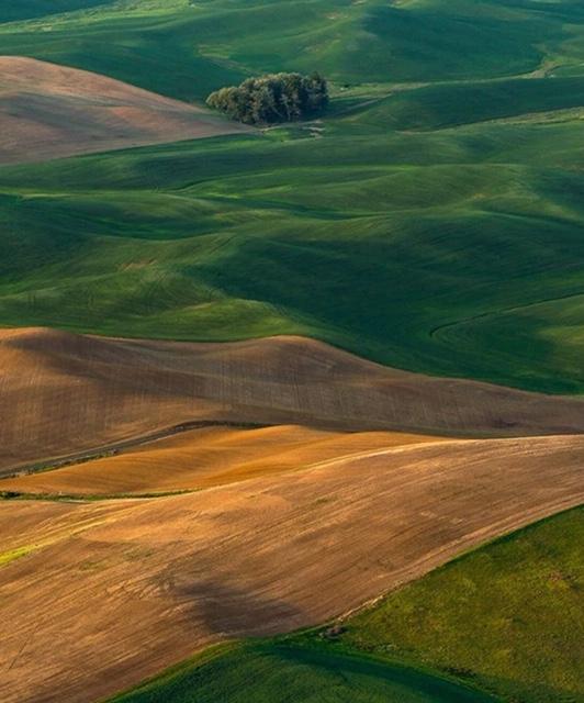 the palouse hills washington photo by browneyedsmile808