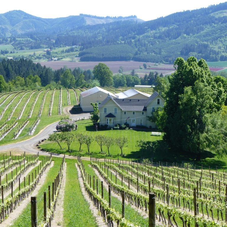 Americas Hub World Tours Wine Tasting in Oregon