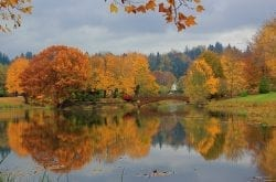 Scenic Spots for Autumn Color Around Washington State
