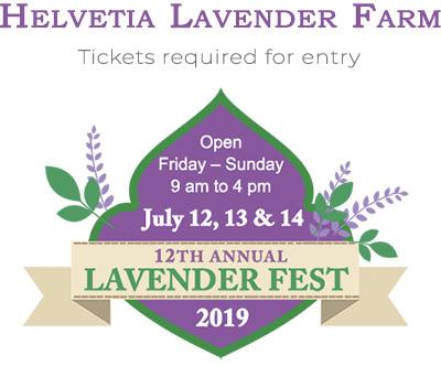 Helvetia Lavender Farm Festival