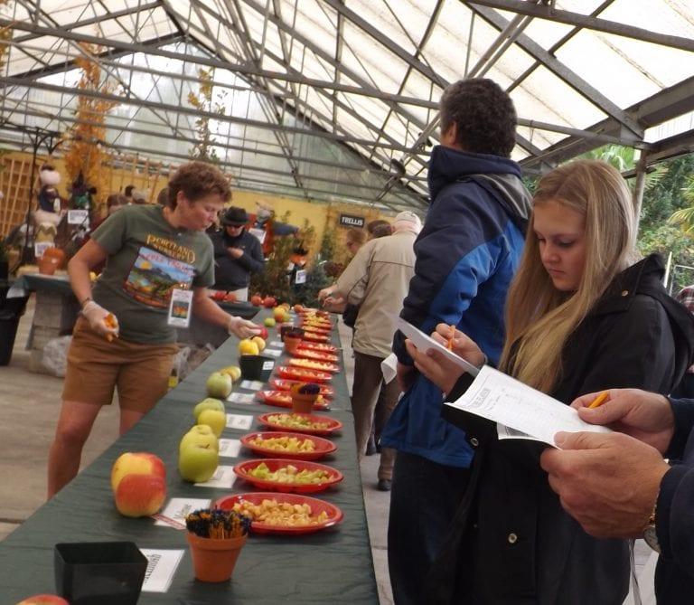 Portland Nursery Apple Tasting Festival