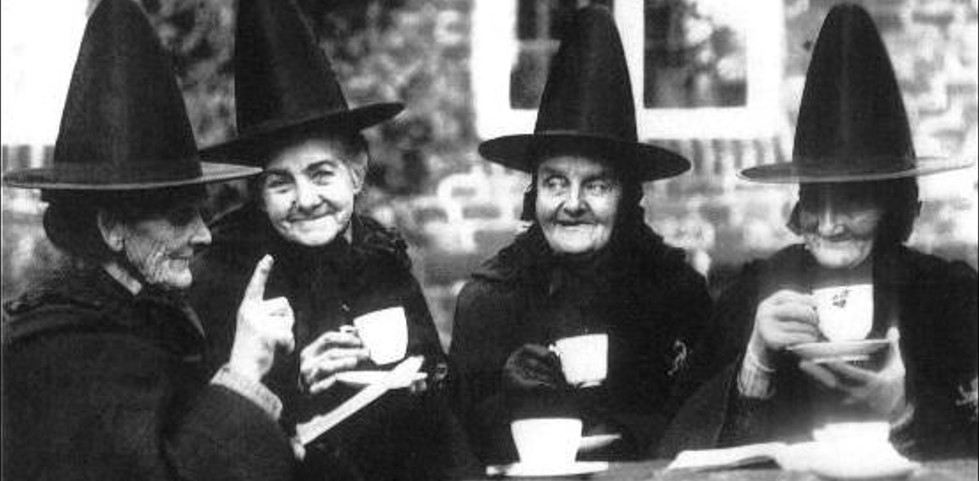 Halloween tea in Eugene Oregon