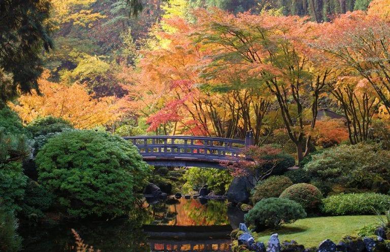 Portland Japanese Garden by Mike Hiran via Flickr