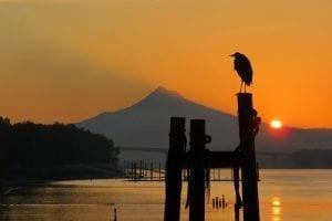 Photo of the Week: Mount Hood Sunrise