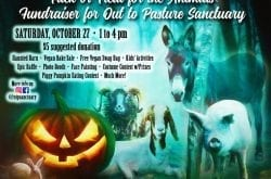 Out to Pasture Animal Sanctuary Halloween fundraiser
