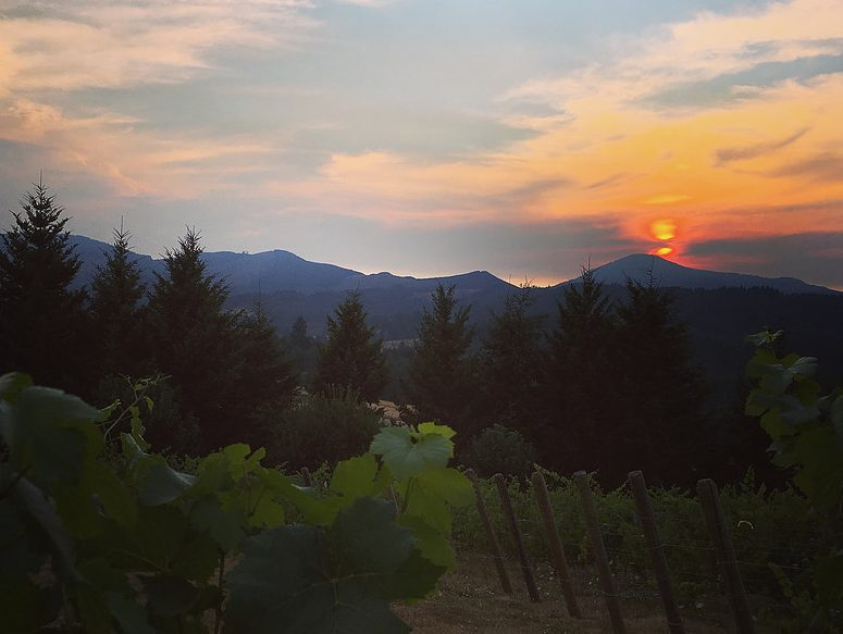 Oregon Wineries with Spectacular Views