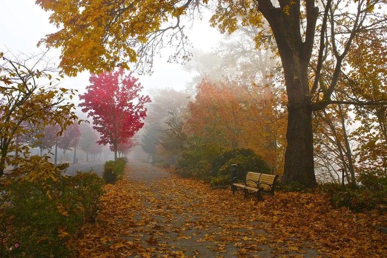 Corvallis Oregon riverwalk in autumn