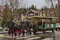 Bellingham WA Fairhaven District Holiday Winterfest