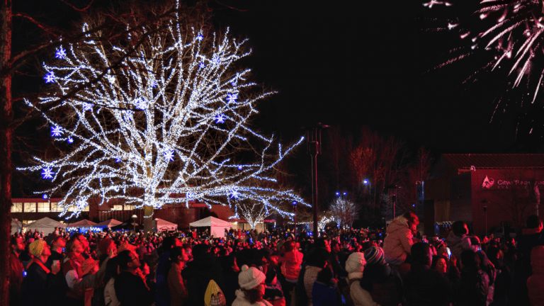 Redmond WA Christmas holiday lights festival