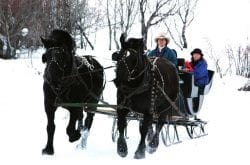 Celebrate the 2019 Holiday Season with a Sleigh Ride!