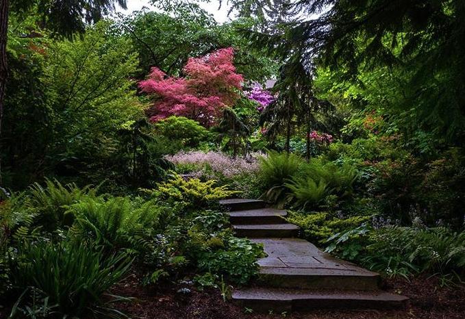 Powellswood Garden