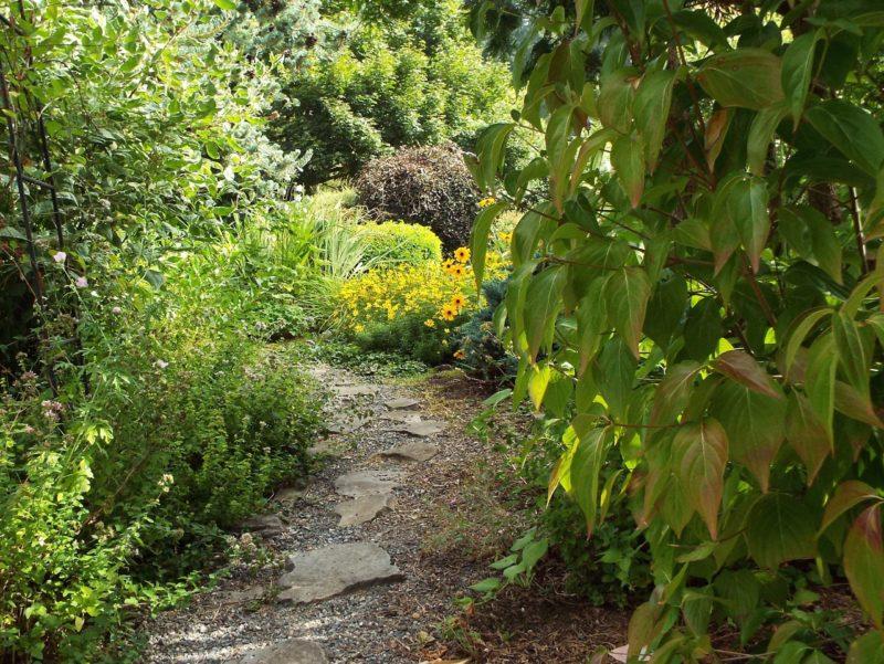 Visiting Naturescaping's Wildlife Botanical Garden