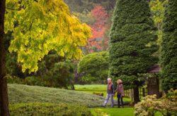 the Bloedel Reserve Garden Bainbridge Island WA