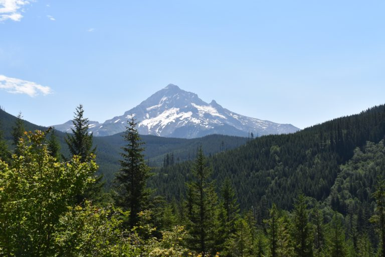 Mt. Hood by Lolo Pass Rd in summer