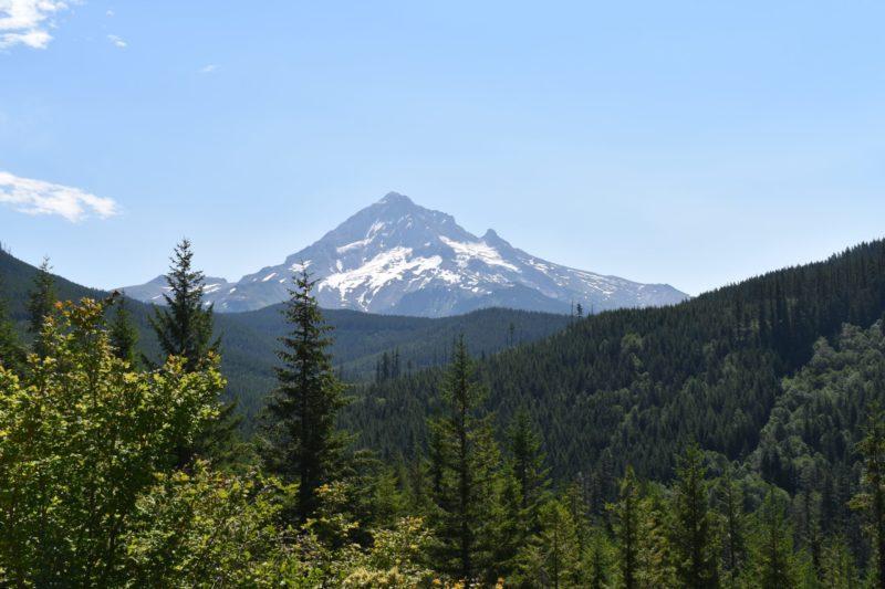 Mt. Hood on Lolo Pass Rd: Photo by D.Woolcott