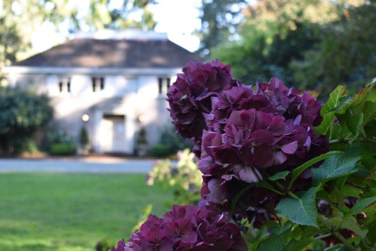 Lakewold Gardens Washington