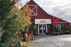 the barn nursery in olympia